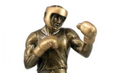 Boxing Trophies Category Image