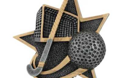 Hockey Trophies Category Image