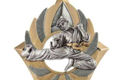 Martial Arts Trophies Category Image
