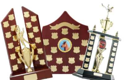Perpetual Trophies Category Image