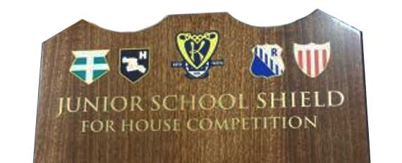 Standard Honour Boards Category Image