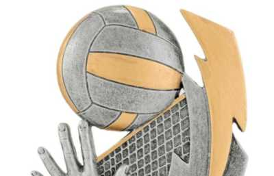 Volleyball Trophies Category Image